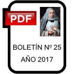 Icono 25